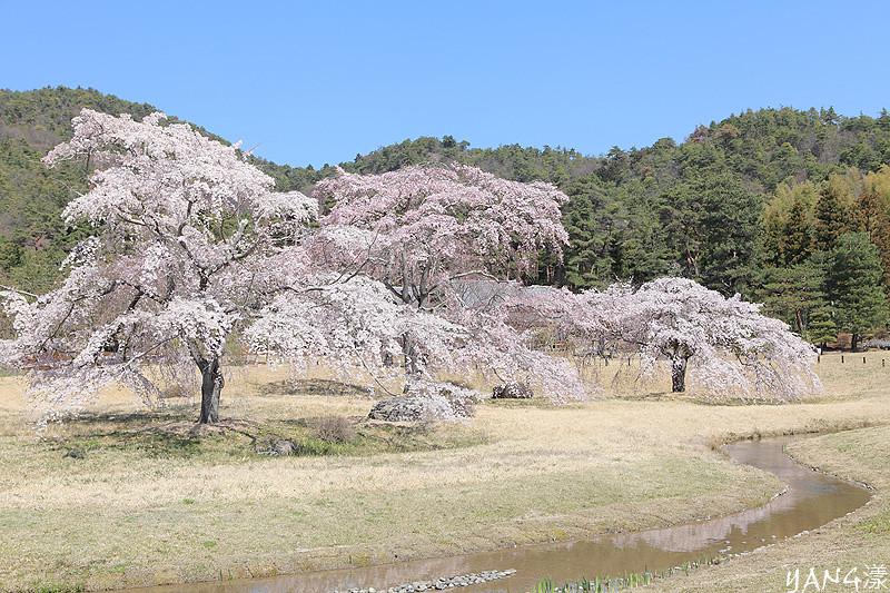 京都-聖地平安郷
