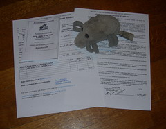 Dust Mite and Permanent paperwork