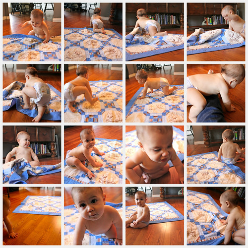 on the move 10 month quilt shoot