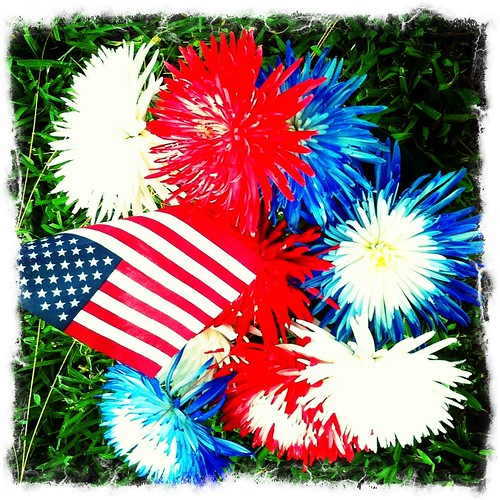 Flower Fireworks by bichonphoto