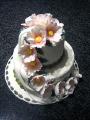 Occasion Cake 3 (2DecorateCakes) Tags: birthday wedding food color cake fun weddingcake occasion cakedecorate