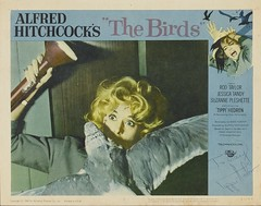 The Birds (1963) Tippi Hedren Autographed Lobby Card (Moviefan1014) Tags: birds autograph taylor rod alfred hitchcock tippi hedren