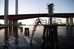 Vermin taking a dip (~tonzze) Tags: bridge water nikon melbourne tokina1224 diving yarra docklands dip boltebridge d300 pollutedwater vermininc