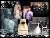 Wedding Portfolios - Selecting killer shots