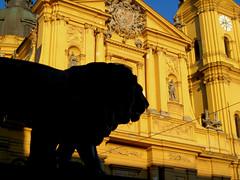 Theatinerkirche - Munich (Pwaully73) Tags: travel vacation silhouette yellow statue sunrise germany munich europe lion theatinerkirche longlight