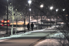 Night Comes to the Howard Temin Lakeshore Path