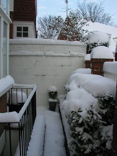 London Snow HY 0109 019