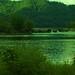 Green Mill_8