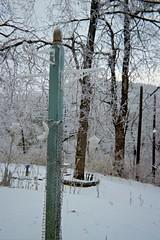 Plant stand in middle tier of yard. (junebug_1944) Tags: icestorm eurekaspringsar january2009