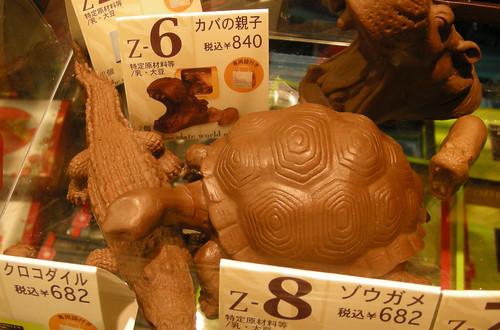 ZOOLOGYゾウガメ&クロコダイル