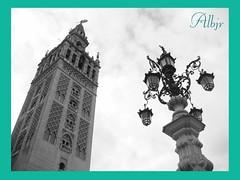 La Giralda (Sevilla) (Alberto Jiménez Rey) Tags: verde blanco gris sevilla torre y negro cybershot alberto cielo manuel rey lucia farolas martinez giralda tapia turquesa jimenez dsct200