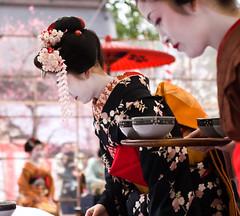 (yocca) Tags: girl japan female wow kyoto shrine 100v10f maiko  kimono matcha 2009  kitanotenmangu baikasai japaneseteaceremony   umefestival  feb2009