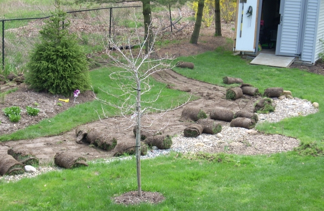 landscaping project by Adrienne in OHio