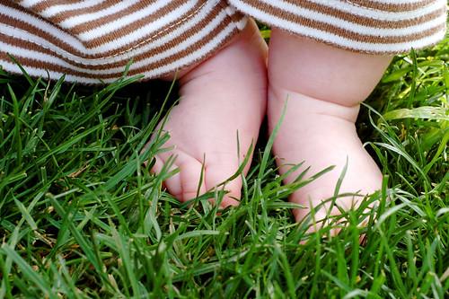 Barefoot Baby Feet