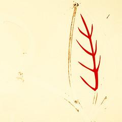 The Eight Plague of Egypt (daliborlev) Tags: abstract square urbandecay minimal plastic brno damage minimalism damaged simple locusts wornout mundanedetail leafstalk eatenleaf weatheredadvertisment