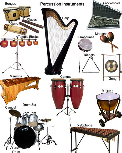 MUSICAL PERCUSSION INSTRUMENTS : PERCUSSION INSTRUMENTS ...