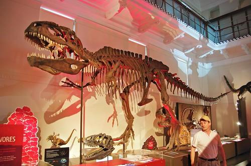 Australian Museum, Sydney