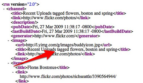 Flickr Services