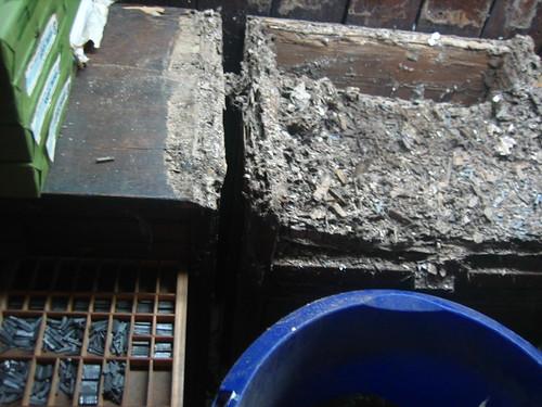 termites or no termites?