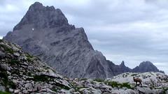 IMGA0296 (Rick McCharles) Tags: trekking trek hiking hike ingolstädter watzmann kärlingerhaus bartolomä wimbach