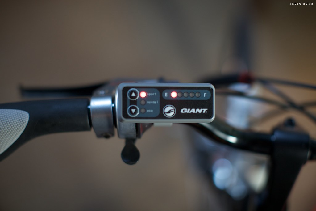 Why did you decide on the Giant Freedom bike over other electric bikes?