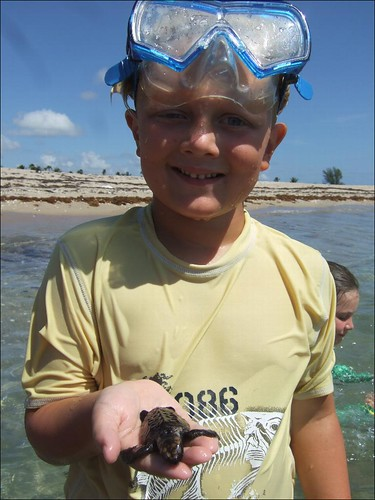 Casey with a loggerhead turtle hatchling!
