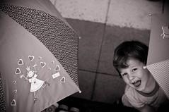 Regenweer