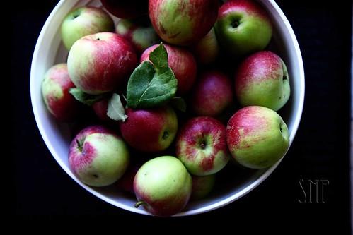 . apples .