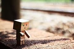 (sⓘndy°) Tags: sanfrancisco canon toy toys box figure figurine sindy kaiyodo yotsuba danbo revoltech danboard 紙箱人 阿楞 amazoncomjp