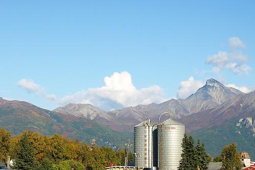 MatSu Valley farm
