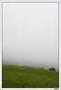 Sensacions de llibertat (Xavito) Tags: prado montaña cavallo montanya embrujo prats hourse caball hautespyrenees tff1 tff2