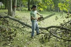 _MG_6457.JPG (zimbablade) Tags: trees sleepyhollow dougmiller videopoem