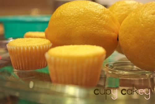 LemonCupCakes#2