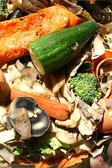 Compost Bin Materials