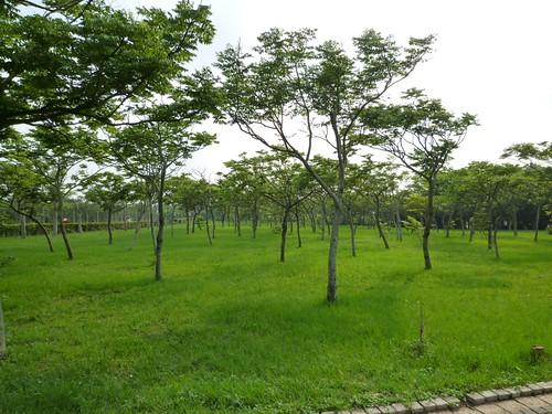 taichung-metropolitan-park-19