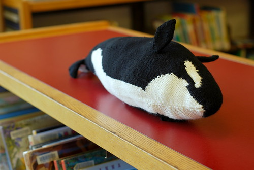 the orca waves to you