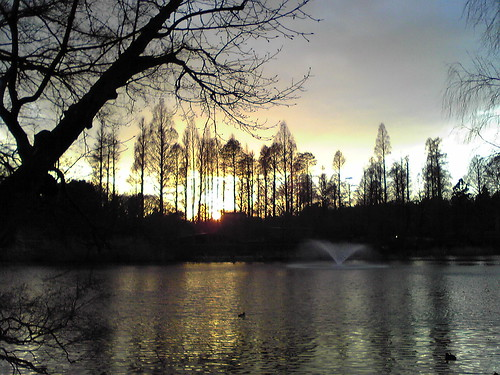 Sunset at Inokashira Pond 3