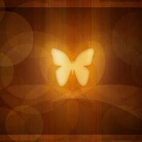 fluture_de_aur