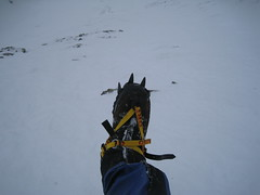 My Crampons (The Hitman!) Tags: mountain snow hiking lakedistrict gully crampons blencathera