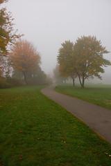 DSC_1549 (mdpayne) Tags: fall boston ma picis october2007