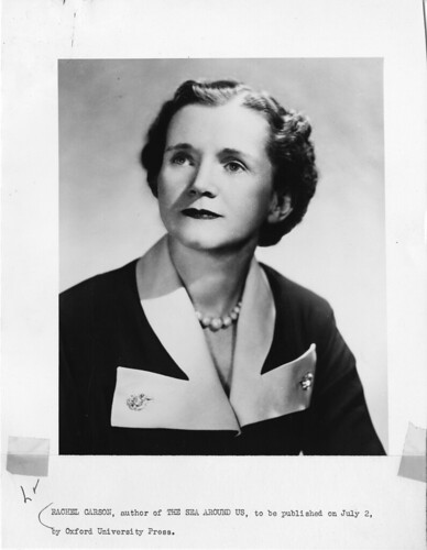 Rachel Louise Carson (1907-1964) by Smithsonian Institution.