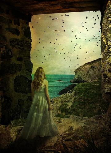 フリー写真素材, 人物, 女性, 人と風景, グラフィックス, フォトアート, 後ろ姿, ドレス,