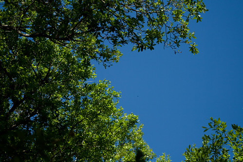blue and green 2