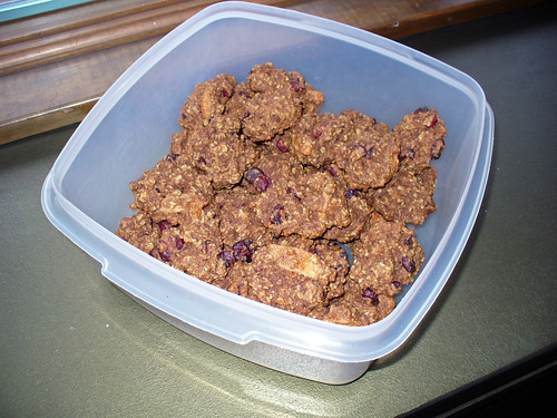 2009-03-28 - Oatmeal Cookies for Dogs - 0004