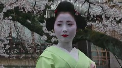 Under Cherry Blossoms.mov (Onihide) Tags: kyoto maiko mov explored gionkobu mamehana 豆はな