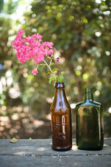 Makeshift Vases (Kim // www.kmillerphotographs.com) Tags: california summer bench backyard bokeh collection blogged recycle bighouse redding 2009 vases glassbottles reuse pinkflowers plusone