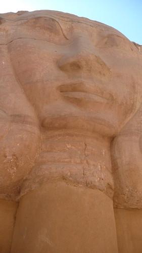 egypt 216