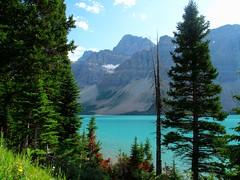 Icefields Parkway Lake Rockies (Blue-yonder) Tags: jasper banff icefields bowlake canadianrockies