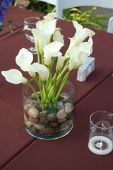 Head Table (Details of the Day) Tags: flowers white callalily quickmatherswedding