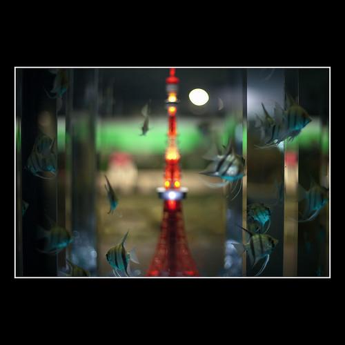 Fish&Tower